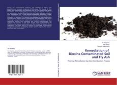 Обложка Remediation of   Dioxins Contaminated Soil and Fly Ash