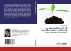 Обложка Survival and Growth of Small Enterprises in Nigeria