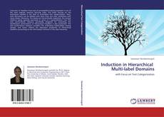 Buchcover von Induction in Hierarchical Multi-label Domains