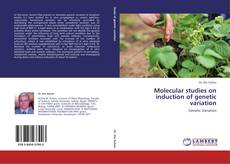 Bookcover of Molecular studies on induction of genetic variation