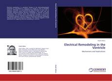 Bookcover of Electrical Remodeling in the Ventricle