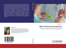 Beta lactamase producers kitap kapağı