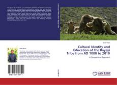 Cultural Identity and Education of the Bayeyi Tribe from AD 1000 to 2010 kitap kapağı
