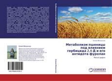 Couverture de Метаболизм пшеницы под влиянием гербицида 2,4-Д и его антидота фуролан