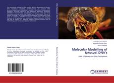 Copertina di Molecular Modelling of Unusual DNA's