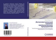 Интеллектуальный капитал промышленных предприятий kitap kapağı