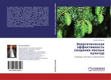 Bookcover of Энергетическая эффективность создания лесных культур