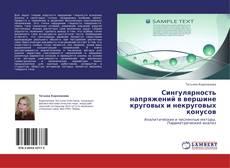 Bookcover of Сингулярность напряжений в вершине круговых и некруговых конусов
