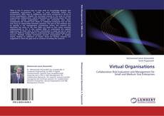 Bookcover of Virtual Organisations