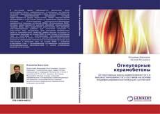 Bookcover of Огнеупорные керамобетоны