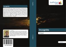 Bookcover of Incognito