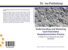 Bookcover of Understanding and Mastering Coal Fired Ashes Geopolymerisation Process