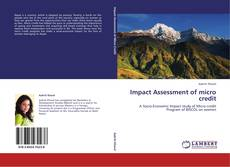 Bookcover of Impact Assessment of micro credit