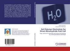 Gel Polymer Electrolyte for Direct Borohydride Fuel Cell kitap kapağı