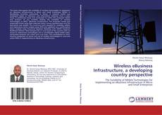 Обложка Wireless eBusiness Infrastructure, a developing country perspective