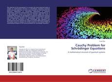 Обложка Cauchy Problem for Schrödinger Equations