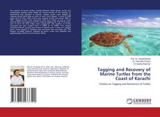 Buchcover von Tagging and Recovery of Marine Turtles from the Coast of Karachi