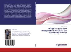 Bookcover of Weighted Lacunary Interpolation Processes On An Infinite Interval