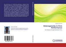 Heterogeneity in Firm Performance的封面
