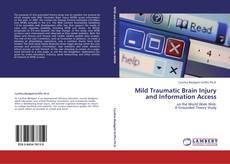 Mild Traumatic Brain Injury and Information Access kitap kapağı