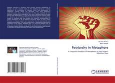 Patriarchy in Metaphors kitap kapağı