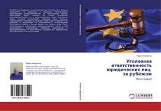 Уголовная ответственность юридических лиц за рубежом的封面