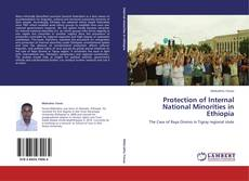 Bookcover of Protection of Internal National  Minorities in Ethiopia