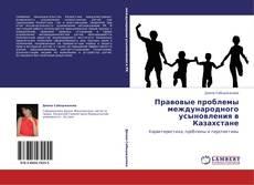 Bookcover of Правовые проблемы международного усыновления в Казахстане