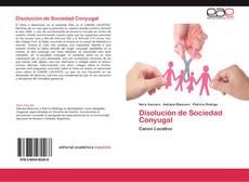 Bookcover of Disolución de Sociedad Conyugal
