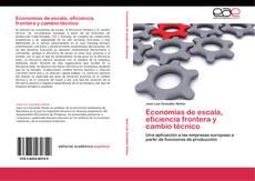 Buchcover von Economías de escala, eficiencia frontera y cambio técnico