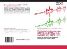 Bookcover of Econometría básica con STATA 9.0,STATA 10.0, EVIEWS 5.0, SSPS 11.0
