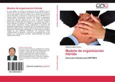 Couverture de Modelo de organización híbrida