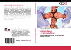 Aprendizaje organizacional的封面