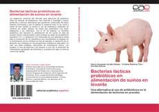 Portada del libro de Bacterias lácticas probióticas en alimentación de suinos en levante