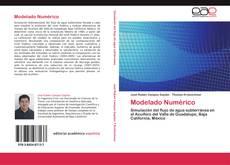Modelado Numérico的封面