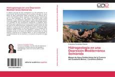 Bookcover of Hidrogeología en una Depresión Mediterránea Semiárida