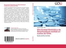 Portada del libro de Efectividad Simbiótica de Sinorhizobium meliloti en suelos de Chile