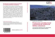 Bookcover of Protección constitucional y procesal de  víctima de delitos colectivos