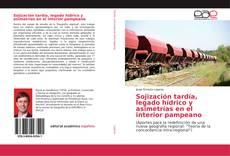 Buchcover von Sojización tardía, legado hídrico y asimetrías en el interior pampeano
