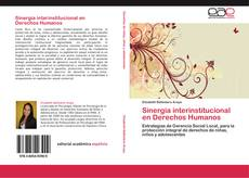Buchcover von Sinergia interinstitucional en Derechos Humanos