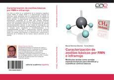 Copertina di Caracterización de zeolitas básicas por RMN e infrarrojo