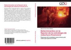 Bookcover of Determinantes en la fijación de la estrategia de cobertura financiera