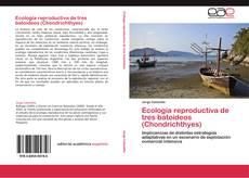 Couverture de Ecología reproductiva de tres batoideos (Chondrichthyes)