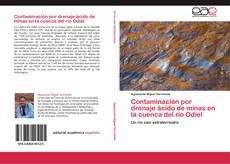 Copertina di Contaminación por drenaje ácido de minas en la cuenca del río Odiel