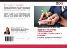 Borítókép a  Recursos naturales potencialmente aprovechables en el norte de México - hoz