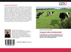 Bookcover of Inspección Ambiental