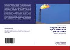 Bookcover of Попутный газ и проблемы его утилизации
