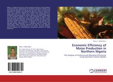 Bookcover of Economic Efficiency of Maize Production in Northern Nigeria