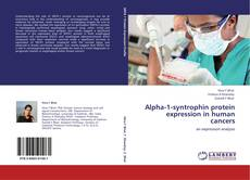 Bookcover of Alpha-1-syntrophin protein expression in human cancers