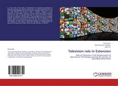 Buchcover von Television role in Extension